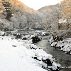 Snow at Cenarth Falls in Carmarthenshire